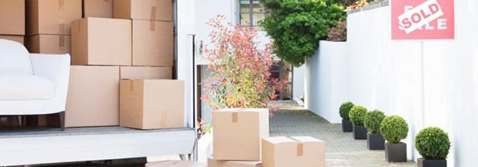 Servicios  de Relocation Relocation Services